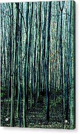 Treez Cyan Acrylic Print
