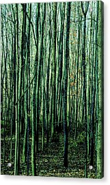 Treez Green Acrylic Print