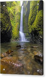 Trek To Lower Oneonta Falls Acrylic Print by David Gn