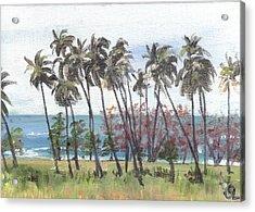 Tres Palmas Acrylic Print by Sarah Lynch