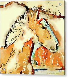 Tribal Pony Acrylic Print by Michele Ross