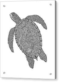 Tribal Turtle II Acrylic Print by Carol Lynne