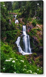 Triberg Waterfalls Acrylic Print
