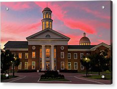 Trible Library Pastel Sunset Acrylic Print