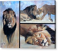 Tribute To Cecil The African Lion Acrylic Print by Suzanne Schaefer