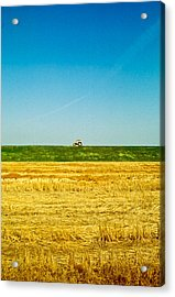 Tricolor With Tractor Acrylic Print
