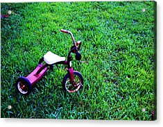 Tricycle Acrylic Print by Beverly Hammond