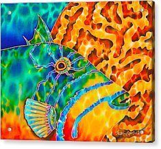 Triggerfish And Brain Coral Acrylic Print