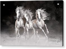 Acrylic Print featuring the digital art Trinity Horses Neutrals by Shanina Conway