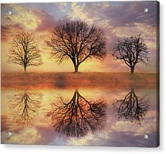 Acrylic Print featuring the mixed media Trio Of Trees by Lori Deiter