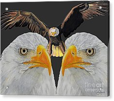 Triple Eagle Acrylic Print by Bill Richards