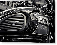 Triumph  Acrylic Print by Off The Beaten Path Photography - Andrew Alexander