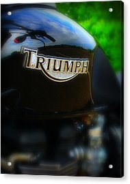 Triumph Acrylic Print by Perry Webster