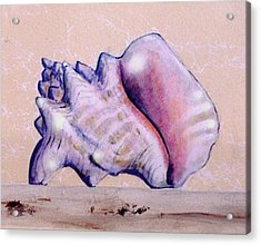 Trompe L'oeil Conch Shell Acrylic Print