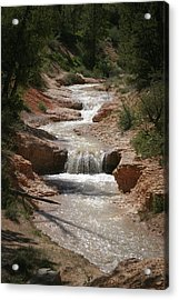 Acrylic Print featuring the photograph Tropic Creek by Marie Leslie