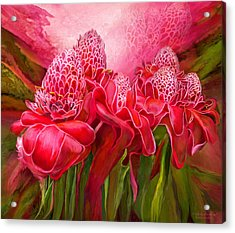 Acrylic Print featuring the mixed media Tropic Garden - Torch Ginger by Carol Cavalaris