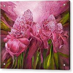 Acrylic Print featuring the mixed media Tropic Garden - Torch Ginger Pink by Carol Cavalaris