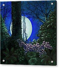Tropic Moon Acrylic Print by Michael Frank