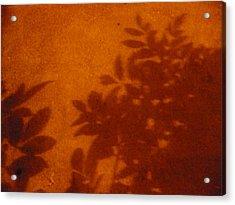 Tropic Sands Acrylic Print by Stephen Davis