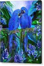 Acrylic Print featuring the mixed media Tropic Spirits - Hyacinth Macaws by Carol Cavalaris