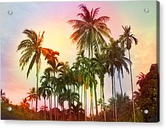 Tropical 11 Acrylic Print