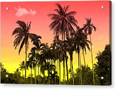 Tropical 9 Acrylic Print by Mark Ashkenazi
