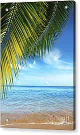 Tropical Beach Acrylic Print by Carlos Caetano
