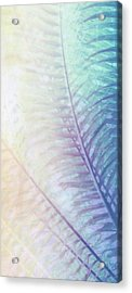Tropical Blue Twilight  Acrylic Print