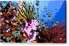 Tropical Coral Reef  2 Acrylic Print by Lanjee Chee