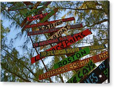 Tropical Directions Acrylic Print