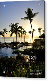 Tropical Dream Acrylic Print by Rosy Kueng