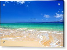 Acrylic Print featuring the photograph Tropical Fantasy  by Kelly Wade