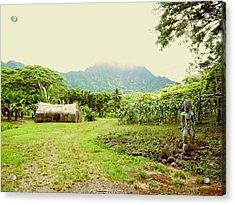 Tropical Farm Acrylic Print by Halle Treanor