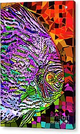 Acrylic Print featuring the photograph Tropical Fish Discus In Abstract 20170325v3 by Wingsdomain Art and Photography