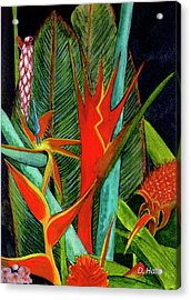 Tropical Flowers Assortment #60 Acrylic Print by Donald k Hall