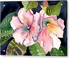 Tropical Flowers Acrylic Print by Janet Doggett