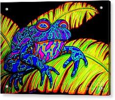 Tropical Frog Acrylic Print by Nick Gustafson