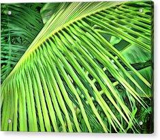 Tropical Green Acrylic Print