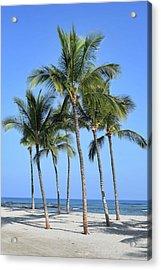 Acrylic Print featuring the photograph Tropical Hawaiian Day by Pamela Walton