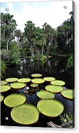 Acrylic Print featuring the photograph Tropical Hopscotch by John Knapko