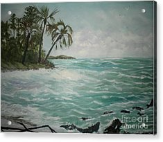 Tropical Island Acrylic Print by Hal Newhouser