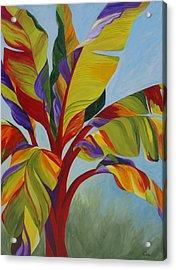 Tropical Mist Acrylic Print by Karen Dukes