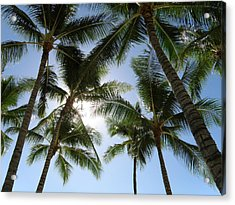 Tropical Mood Acrylic Print