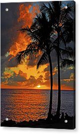 Tropical Nights  Acrylic Print by Lynn Bauer
