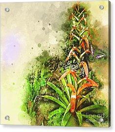 Tropical Orange Acrylic Print by Deborah Nakano