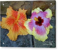 Tropical Pair Acrylic Print