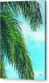 Tropical Palms Maui Hawaii Acrylic Print by Sharon Mau