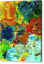 Tropical Reef #308 Acrylic Print by Donald k Hall