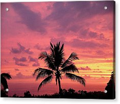 Tropical Sunset Acrylic Print by Karen Nicholson