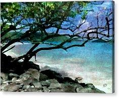 Tropical Utopia  Acrylic Print
